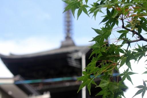 京都府、「無許可民泊」の49施設に営業中止の指導〜Airstair