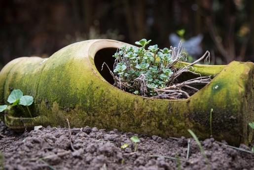 民泊トラブル!!【破損】花瓶落下でも満開の花たち。〜民泊のトラブル君