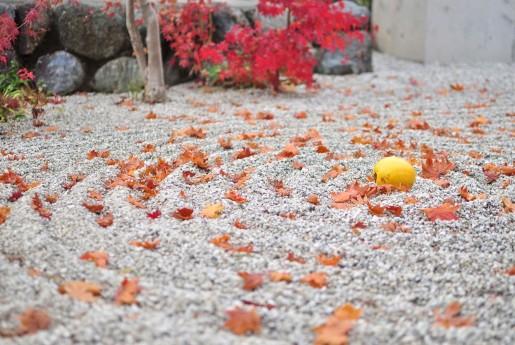 京都市、宿泊税導入へ 合法民泊も対象に〜教えて民泊先生!民泊で行う不動産投資のはじめ方
