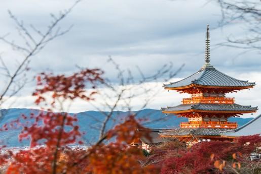 京都市の訪日客を徹底解剖 簡易宿所の平均宿泊日数はホテルの2倍も〜民泊専門メディア Airstair