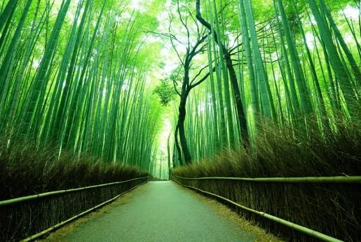 京都市の合法民泊のルールが厳しくなる〜教えて民泊先生!民泊で行う不動産投資のはじめ方