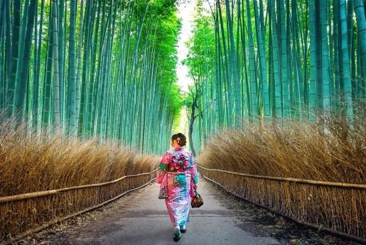京都市の民泊条例、可決・成立〜MINPAKU.Biz